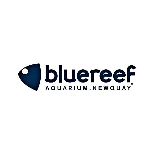 bluereef aquarium logo