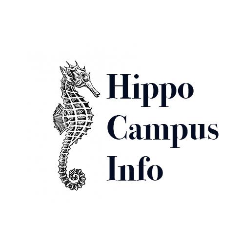 seahorse info