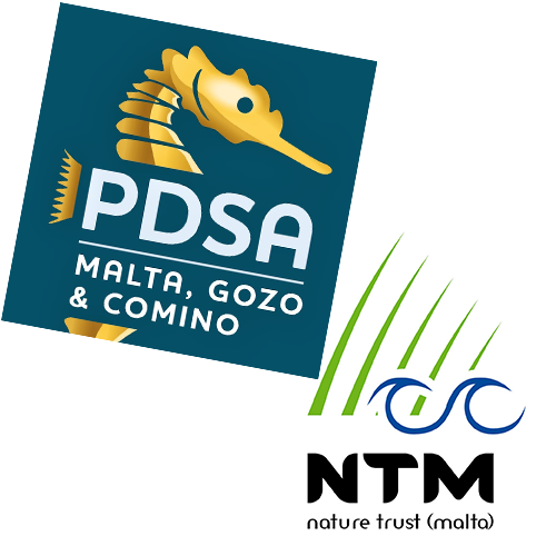 Pdsa and Ntm logo