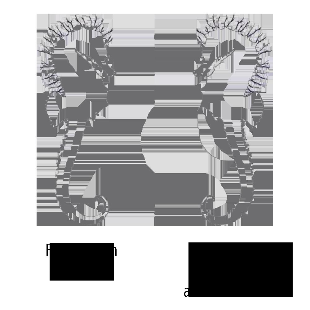 sex seahorse chart