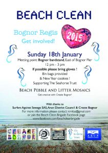 January Beach Clean_A5 web copy
