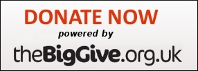 donate big give logo